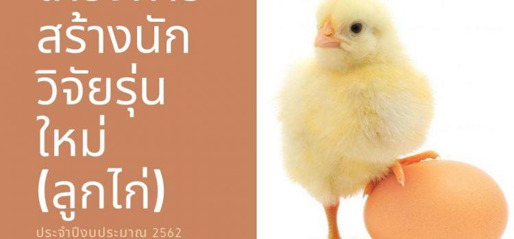 """ขอเชิญเข้าร่วมอบรมโครงการ """"สร้างนักวิจัยรุ่นใหม่"""" (ลูกไก่) จัดโดยมหาวิทยาลัยราชภัฏกาญจนบุรี"""
